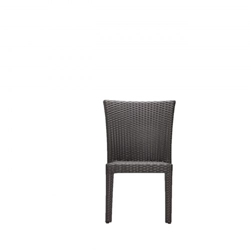 Amazon Dining  Chair